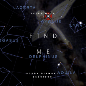 Rough Diamond of song 'Find Me'